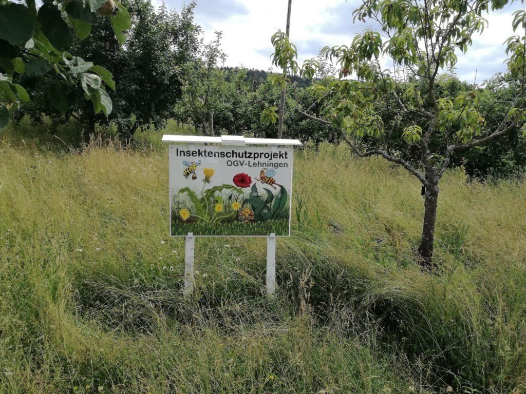 Insektenschutzprojekt 2018_Bild3